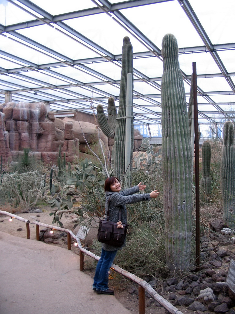 Miaomiao with cactuses at Burgers` Desert at Burgers` Zoo