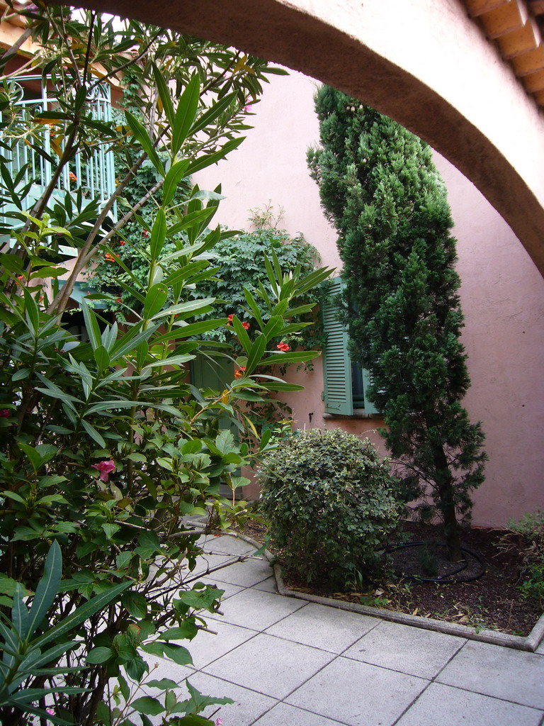 Plants at the courtyard of the Vert H�tel