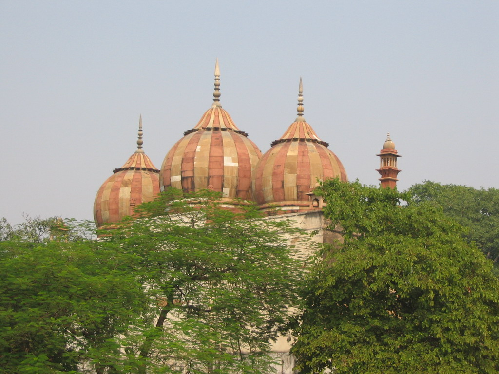 Domes of Safdarjung`s Mosque