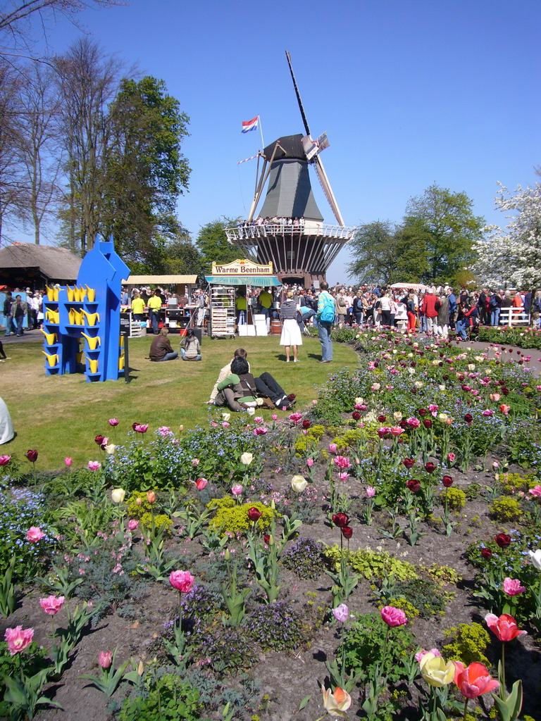 Grassland with flowers and a windmill at the northeast side of the Keukenhof park