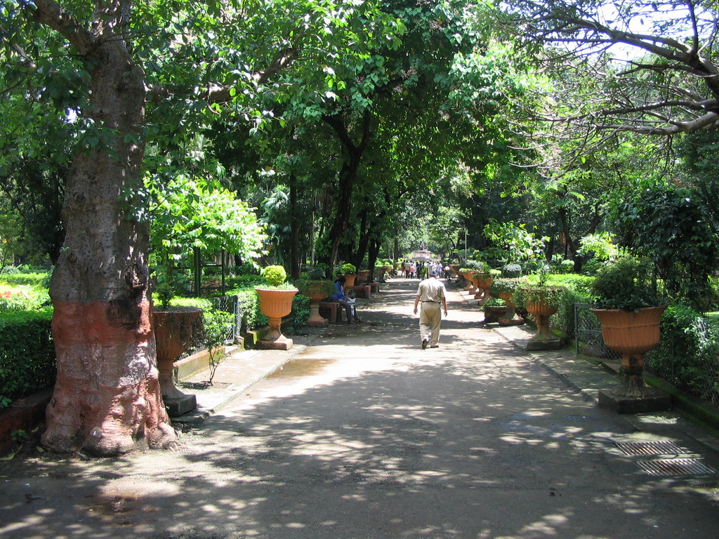 The central road of Victoria Gardens