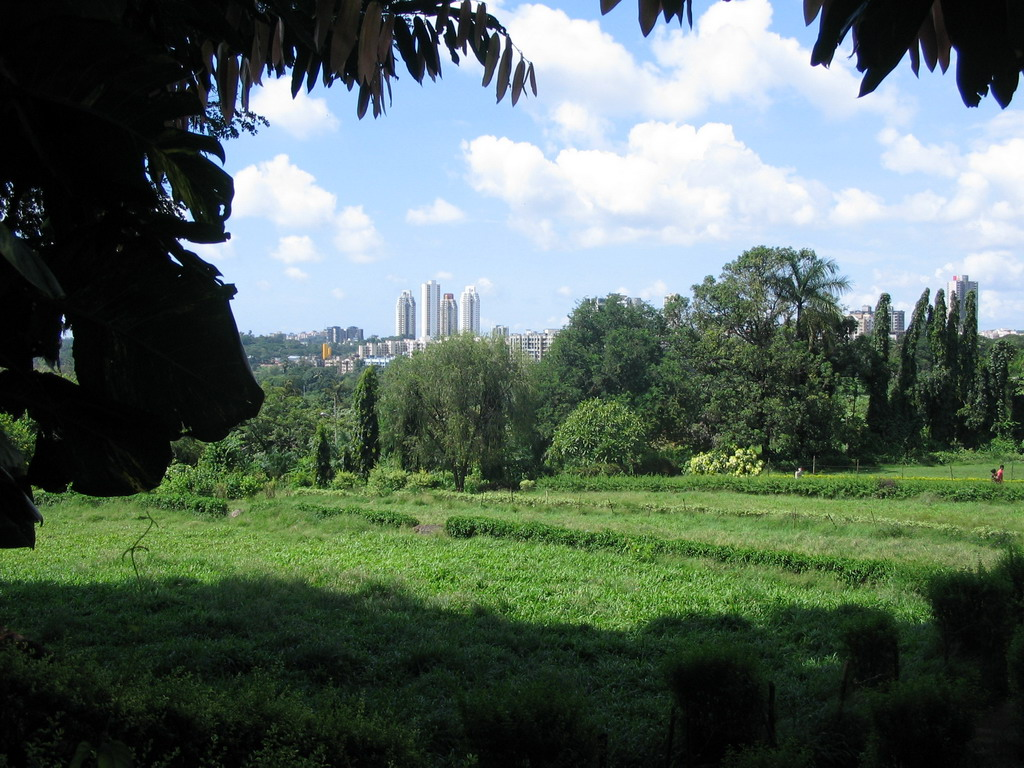 View on the city from the Botanical Garden