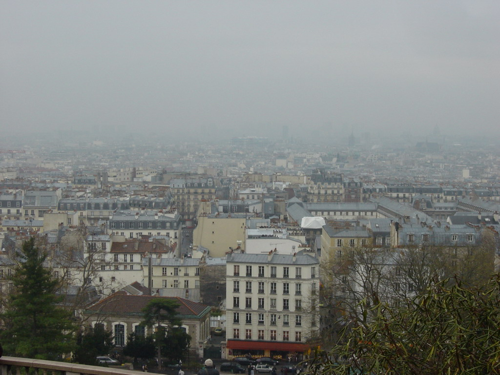 View on the city center from the Basilique du Sacr�-Coeur church