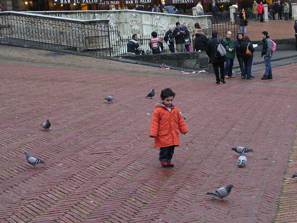 Child chasing pigeons in front of the Gaia Fountain at the Piazza del Campo square